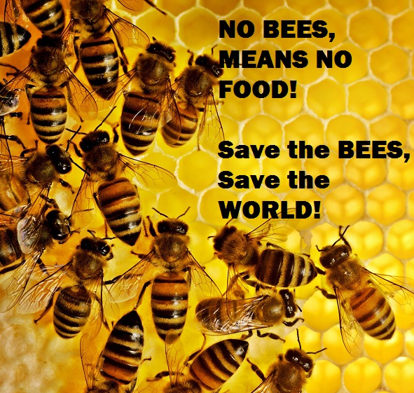 Save the bees, save the world! Donate now! The Flo-Hive Project